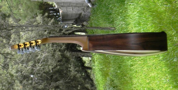 DSCN6340